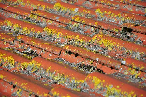 Researching Roof Repair Firms in Your Region