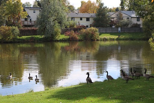 Allen Park, Greeley, Colorado