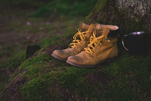 Boots, Shoes, Moss, Hiking Shoes, Worn